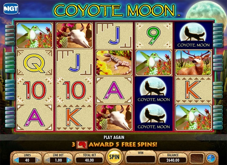 Coyote moon casino game download spiderman 2 game for pc kickass