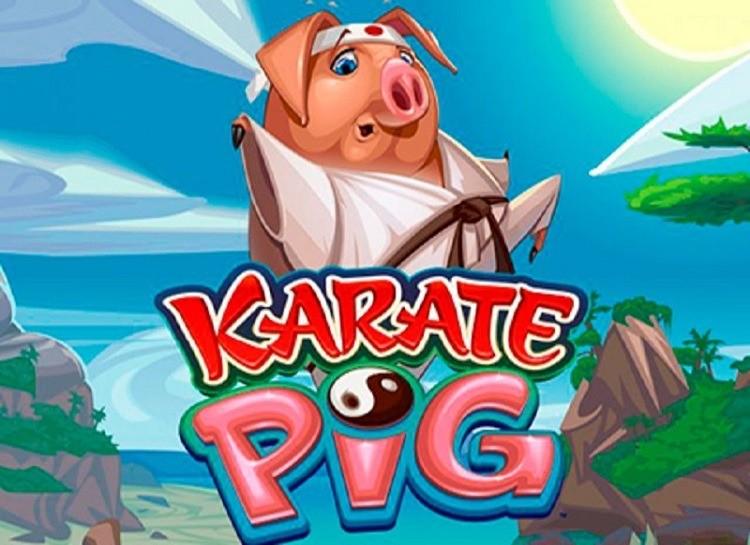 Play Karate Pig Free Slot Game