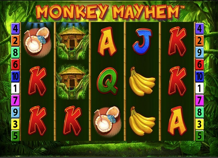 Monkey Mayhem Slot