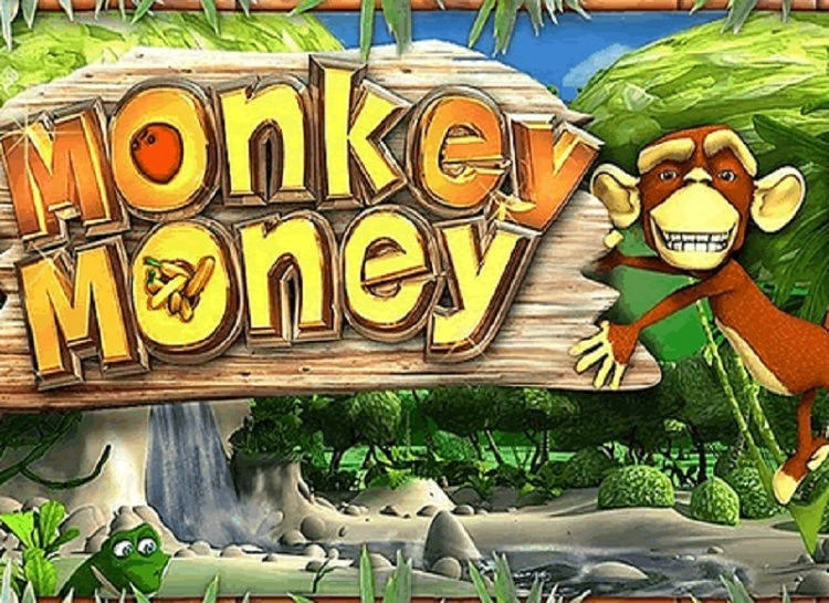 Play Monkey Money Free Slot Game