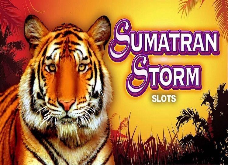 Play Sumatran Storm Free Slot Game