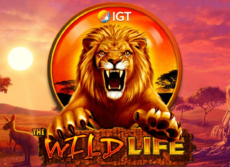 Play Wild Life Free Slot Game