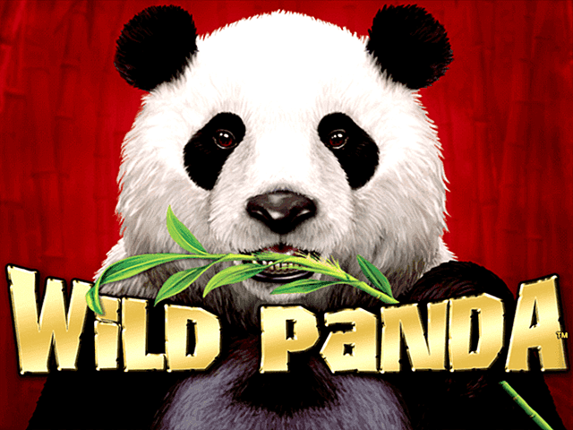 Play Wild Panda Free Slot Game
